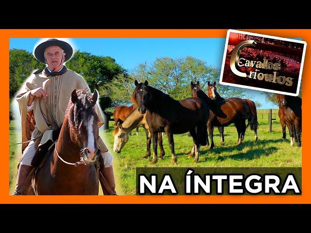 Programa Inédito na Íntegra 11/09/21
