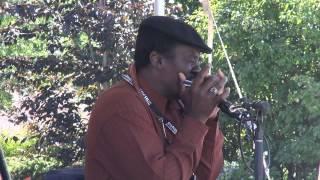 Terry Harmonica Bean - Catfish Blues (harp)