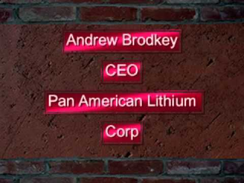 Investing in Lithium with CEO of Pan American Lithium - CDTV.net