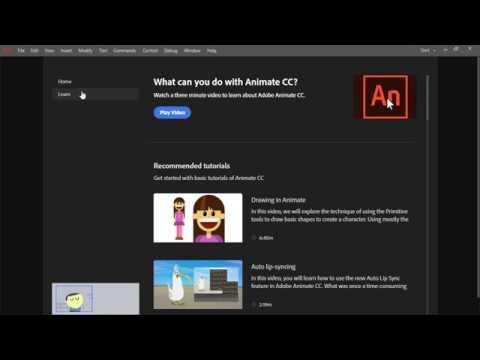 Adobe Animate | Animate overview
