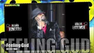 Beenie Man - Feeling Gud [Happy Daze Riddim] June 2012