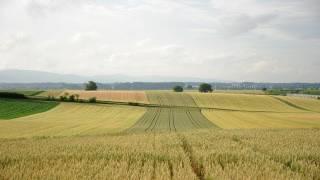 Naturgeräusche - Wind und Wetter, die Geräusche der Natur - Zuhören und Enspannen