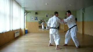 Jundokan Goju Ryu Karate: Gekisai Bunkai Drill 1.2