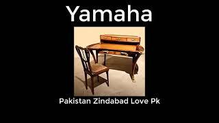 Funniest Fact's Of Pakistan #shorts