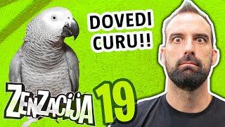 Šarić zove papagaja HUGA | ZENZACIJA
