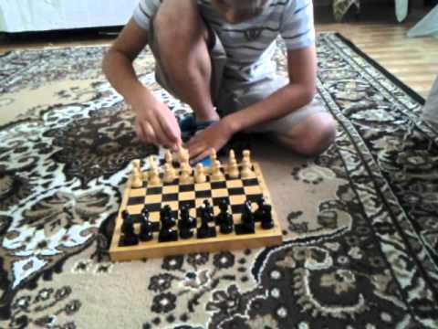 Как играть в шахматы и шашки