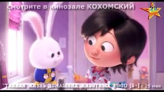 """""""Тайная жизнь дом животных 2"""" 3D   в кинозале КОХОМСКИЙ (""""2К"""") с 25 мая"""
