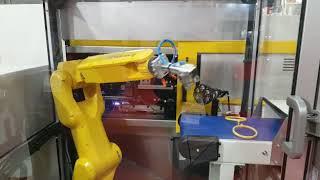 Interplas 2017 - ROBOSHOT and LR Mate Automation Cell