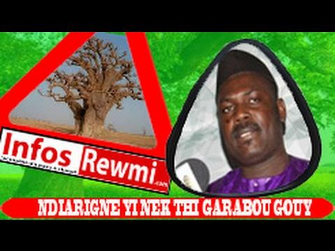 Important! El Hadji Malick Guèye dévoile les bienfaits cachés dans le baobab