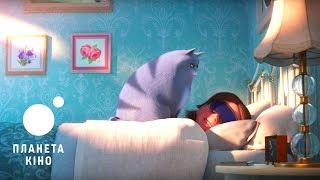 Секрети домашніх тварин 2 - офіційний трейлер «Як бути кицькою» (український)