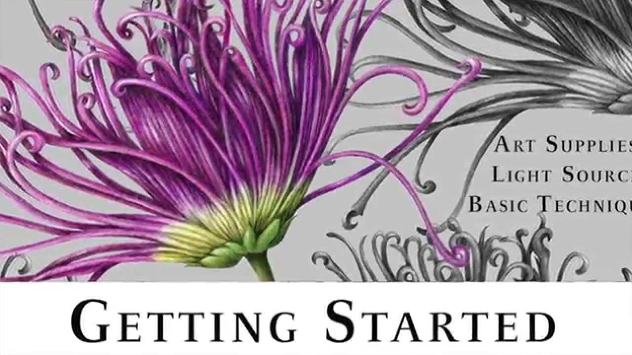 Botanical art tutorial ~ ground cherries: how to use watercolour.