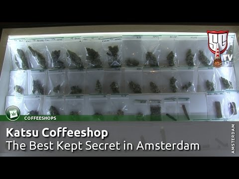 Katsu Coffeeshop - The Best Kept Secret in Amsterdam - Smokers Guide TV Amsterdam