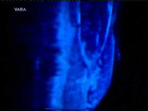 Vara Documentary CAVE Virtual Reality.wmv