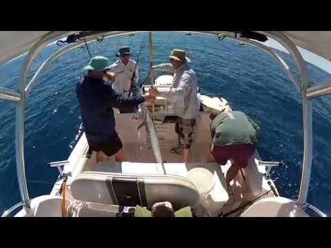 Fishing Off Yeppoon & The Great Keppel Islands August 2013