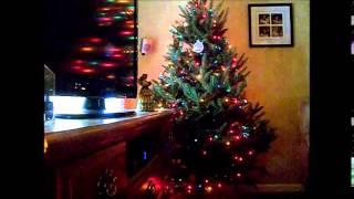 VLOGMAS?! Decorating The Christmas Tree 2014! Thumbnail