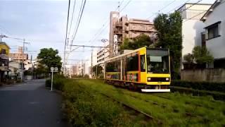 都電荒川線 都電落語会 ラッピング電車(8900形)