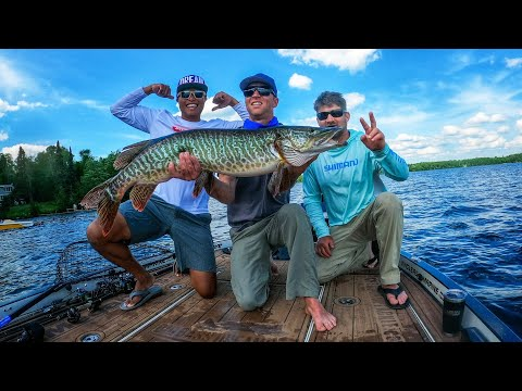 Giant Tiger Musky On Finesse Bass Fishing Gear?! - #BigMuskyDreams #BBDPersonalTraining Session