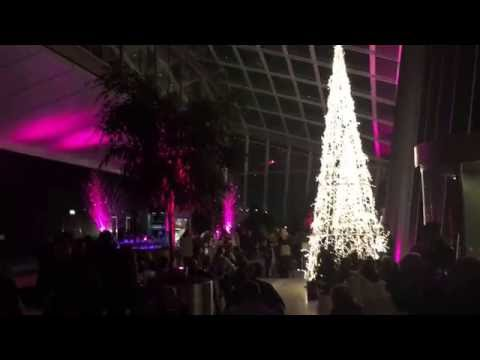 Sky Garden by night - Amazing overview on London