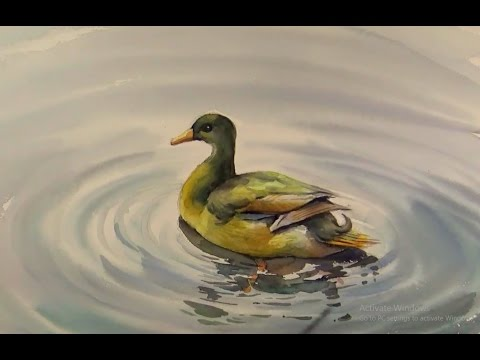Watercolor Painting : Duck in water