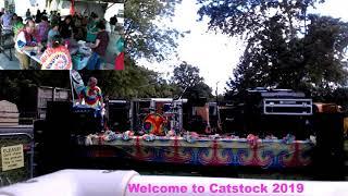Catstock   2019 Pt2    Friends Of Felines Rescue Center Ffrc