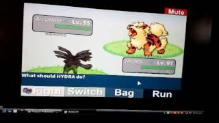 Roblox Progetto pokemon Incontra il mio pseudo leggendario c: