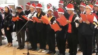 chss的合唱圑表演(金鐘) Choir Performance(Admiralty)相片