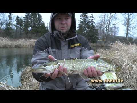 новости с рыбалки с петербург