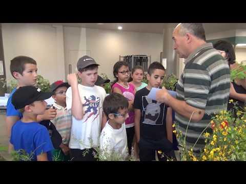 Les enfants des écoles de Thel et Cours la Ville visite la Fête du Sentier