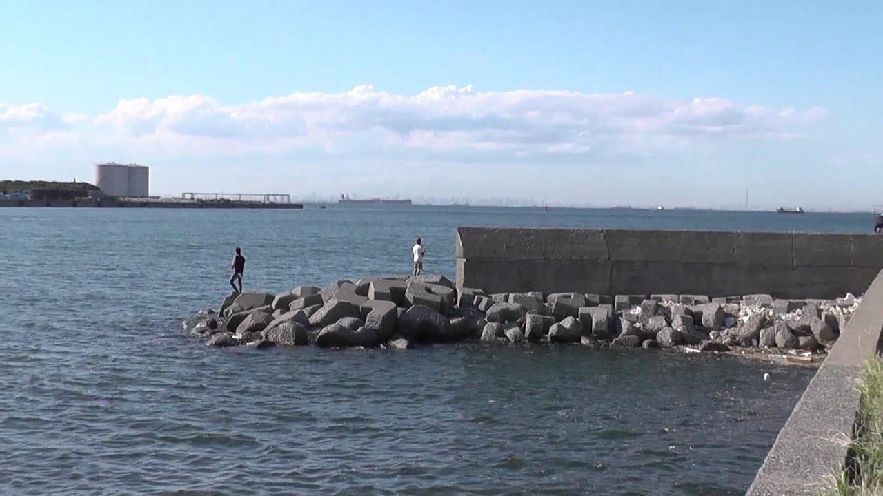 公園 袖ヶ浦 釣り 海浜 【アイナメ神話】袖ヶ浦海浜公園で穴釣り→釣れたのは…