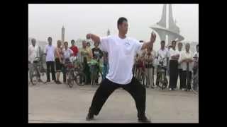 Ding Mingye (丁明业) - Chen Style (Hong Form) Taijiquan YiLu Routine