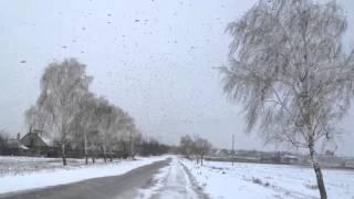 Слободзея, Апокалипсис, :) Вороны 21.12.12