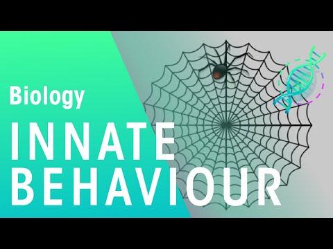 Innate Behaviour | Biology for All | FuseSchool