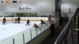 Telford Tigers 4 Basingstoke Bison 0 5th January 2014