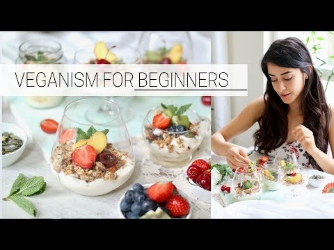 BEGINNER'S GUIDE TO VEGANISM » how to go vegan