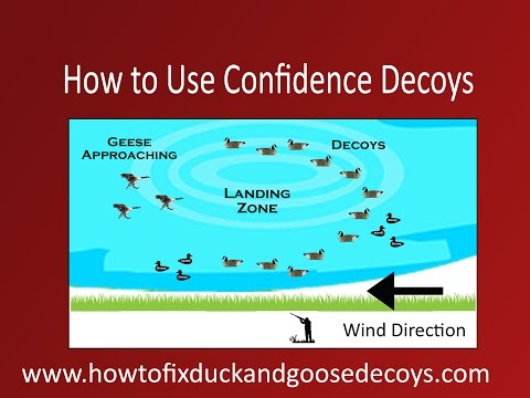 How To Use Confidence Decoys