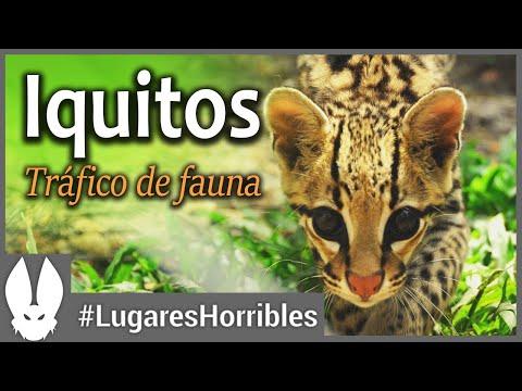 Los lugares más horribles del mundo: Iquitos