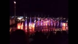 Сочи Парк — Водное шоу Aquatic Show