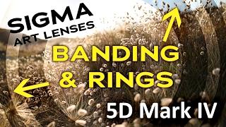 Fix-Ringen en bands op video / foto ' s genomen met de Sigma Art objectieven op de 5D Mark IV/Canon 6D Mark II