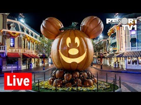 🔴Live: Disneyland Halloween Live Stream - 10-27-18