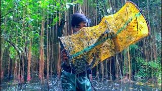 Bẫy Dính Cập Lươn Khủng Của Rừng Hoang alone in the wild forest