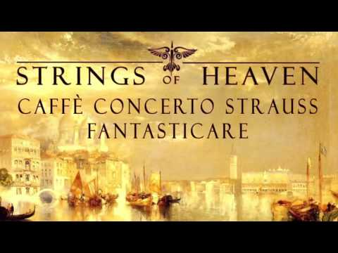 Classical Venice Music Vol. 04 by Caffè Concerto Strauss | Venezia | Venedig | Venetian |
