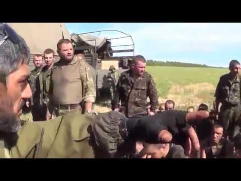 Разбитые каратели ДНР