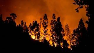 Чили: ещё 3000 человек эвакуированы из-за пожара (новости)