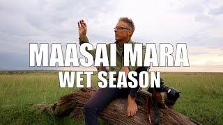 The Maasai Mara in the Rainy Season - Safari Tips