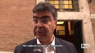 Fascismo, Fiano: