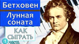 Как сыграть Лунную сонату Бетховена на фортепиано (How to play Moonlight sonata Beethoven piano)