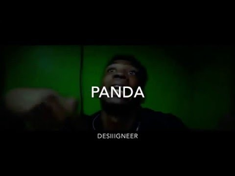 Panda Official video ft west - desiigner