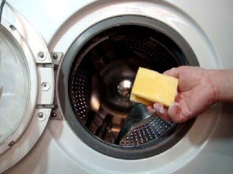 Как почистить резиновую манжету стиральной машины