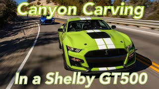 2020 Shelby GT500 Canyon Carving — We Tackle Angeles Crest Highway With the 760 HP Ford Mustang!!!