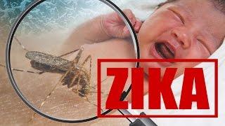 ZIKA-VIRUS - DIE UNGLAUBLICHE WAHRHEIT